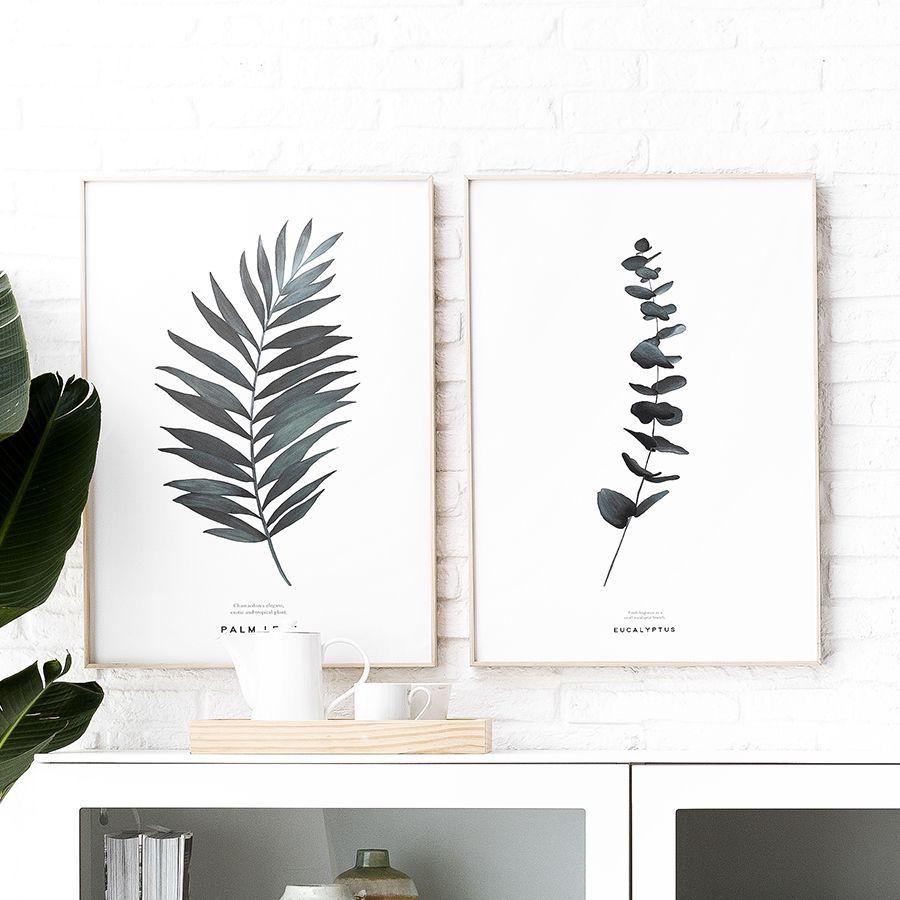 Natura Palm lámina