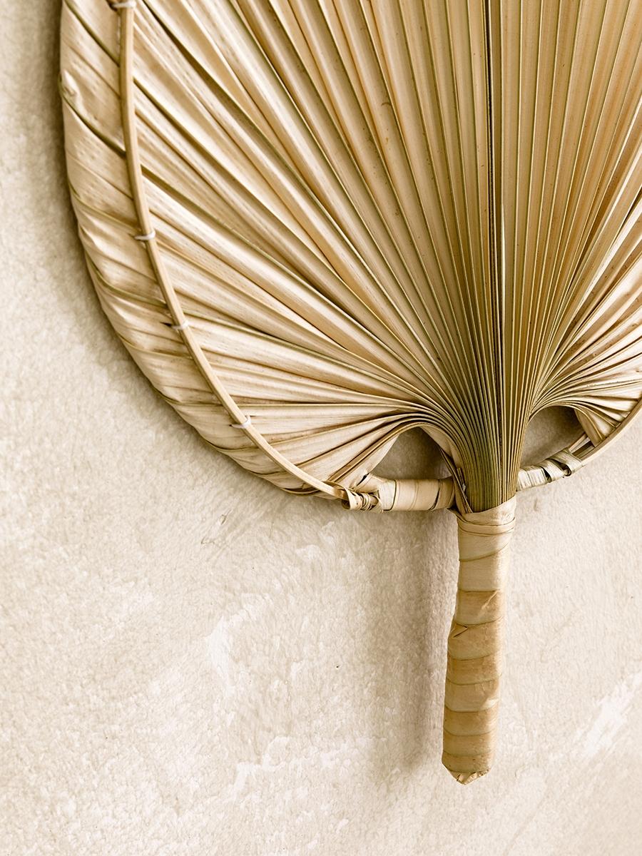 Pequeno ventilador palm