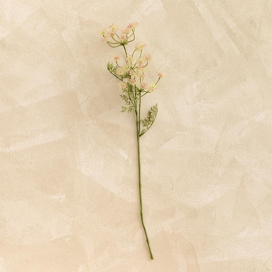 Aneldo flor h60 rosa