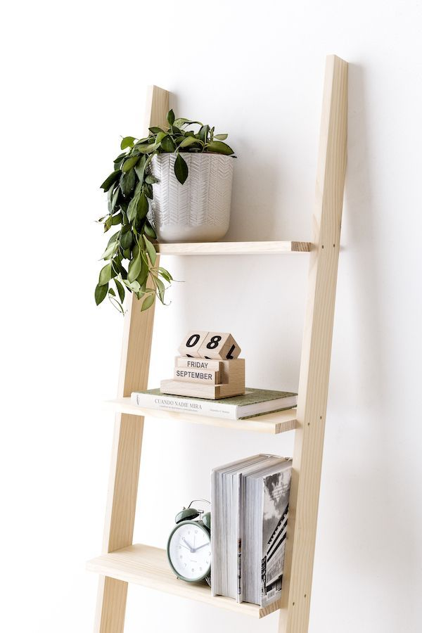Nussa scala libreria naturale