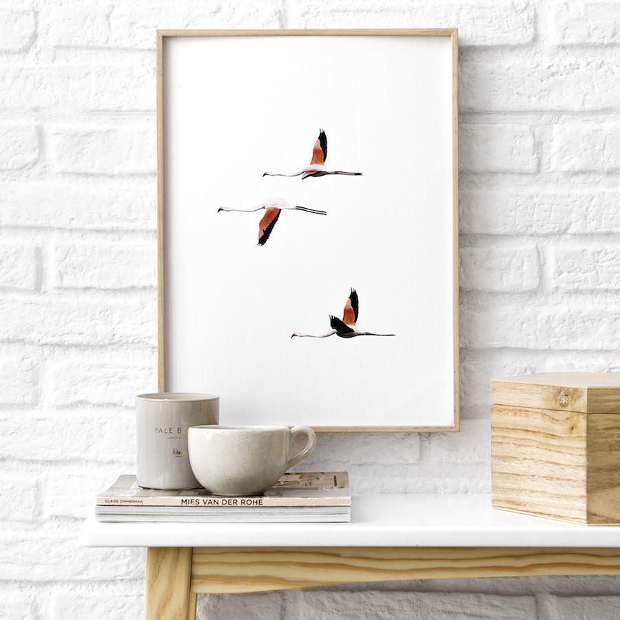 Natura bird stampa
