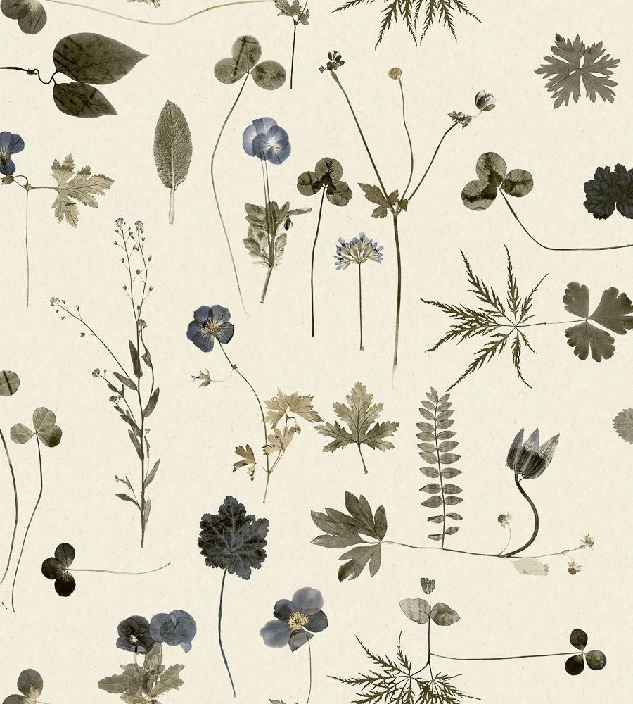 Simplicity botànica wallpaper
