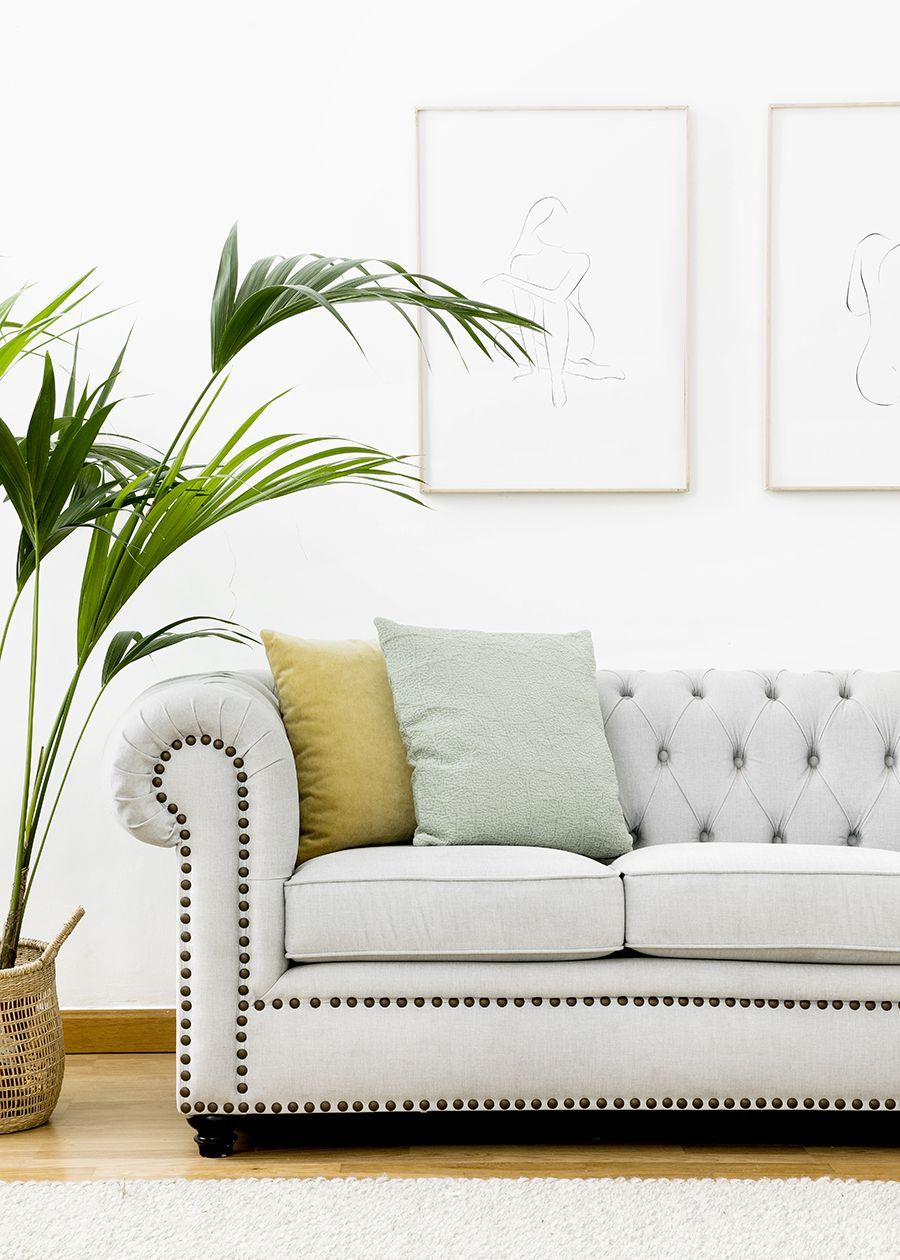 Chester divano